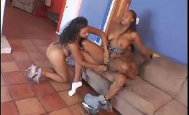 Mulheres negras fudendo gostoso nesse menage